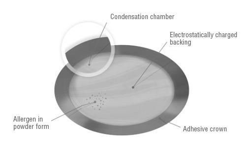 The Viaskin platform contains allergen in powdered form